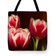 Three Red Tulips Tote Bag