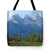 1m3203-three Sisters Faith Hope Charity Tote Bag
