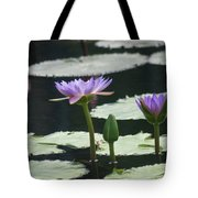 Three Stages Of Blue Bloom Tote Bag