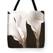 Three Tall Calla Lilies In Sepia Tote Bag