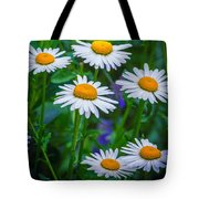 Three Tiers Of Beauty Tote Bag