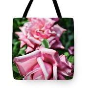 Three Times A Lady Tote Bag