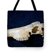 Three Toed Slingshot Tote Bag