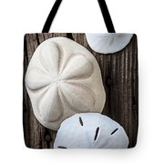 Three Types Of Sand Dollars Tote Bag by Garry Gay