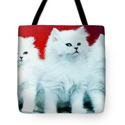 Three White Cats Tote Bag