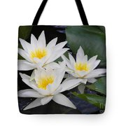 Three White Waterlilies Tote Bag