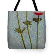 Three Wishes For The New Year Tote Bag