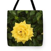Three Yellow Roses In Rain Tote Bag