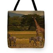 Three Zebras And A Giraffe Tote Bag