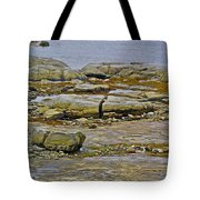 Thrombolites Up Close In Flower's Cove-nl Tote Bag