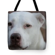 Through The Eyes Of A Pitbull II  Tote Bag