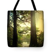 Through The Forest To The Lake Tote Bag