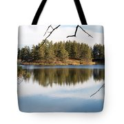 Through The Frame Tote Bag