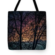 Through The Tree Tote Bag