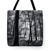 Through The Trees In Black And White Tote Bag