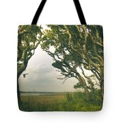 Through The Twisty Trees Tote Bag