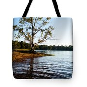 Through The Years Tote Bag by Parker Cunningham