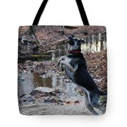 Throwing Stones Tote Bag