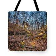 Thru The Woods Tote Bag