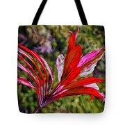 Red Ti Plant Tote Bag