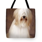 Tibetan Terrier Dog Tote Bag