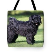 Tibetan Terrier Dog Standing Tote Bag