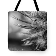 Tickle My Fancy Tote Bag