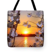 Tidal Basin Sunset With Cherry Blossoms Tote Bag