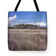 Tidal Marsh On Roanoke Island Tote Bag