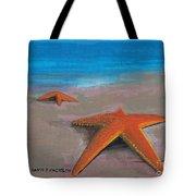Tidal Plain Tote Bag
