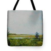 Tidal Plains Tote Bag