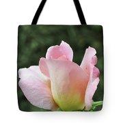 Tiffany Hybrid Rose Tote Bag
