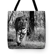 Tiger 2 Tote Bag