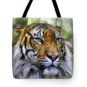 Tiger 26 Tote Bag