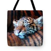 Tiger Cub Nap Tote Bag
