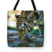 Tiger Drinking Water Tote Bag
