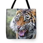Tiger Growl Tote Bag