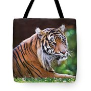 Tiger In The Sun Painting Tote Bag