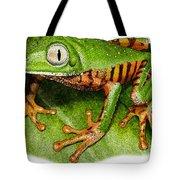 Tiger-legged Monkey Frog Tote Bag