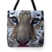 Tiger Lick Tote Bag
