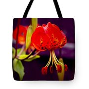 Tiger Lilly In Repose Tote Bag