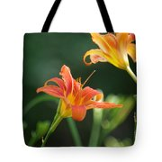 Tiger Lily And Bud   # Tote Bag