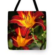 Tiger Lily0243 Tote Bag