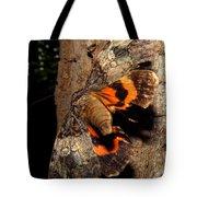 Tiger Moth Flight Tote Bag