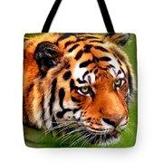 Tiger Painting Tote Bag