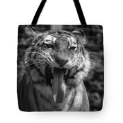 Tiger Say Aw Tote Bag