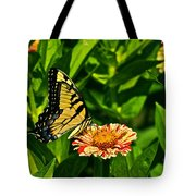 Tiger Swallowtail And Peppermint Stick Zinnias Tote Bag