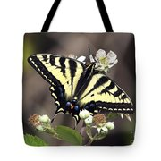 Tiger Swallowtail Butterfly 2a Tote Bag