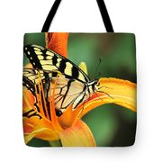 Tiger Swallowtail Butterfly On Daylily Tote Bag