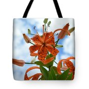 Tigers In The Clouds 8566 Tote Bag